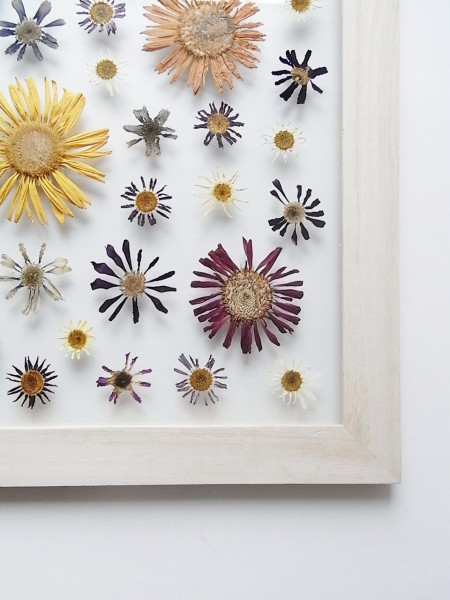 FLOWER ADJUSTMENT (フラワーアジャストメント)