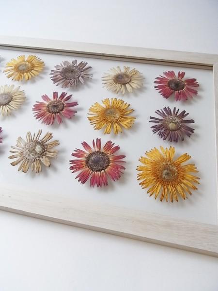 FLOWER ADJUSTMENT(フラワーアジャストメント)